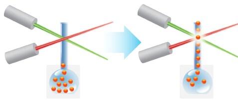 luminex multiplex assays thermo fisher scientific