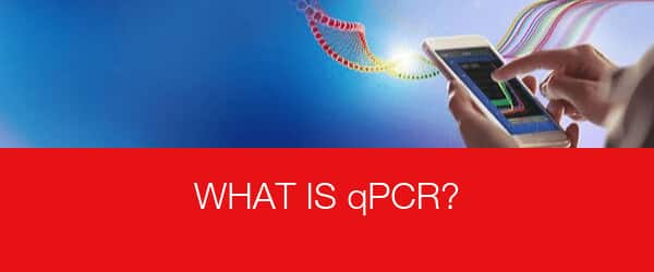 What is qPCR?