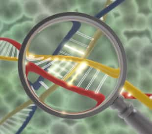 A graphic of a magnifying glass reveals the structure of DNA, illustrating the process of molecular karyotyping