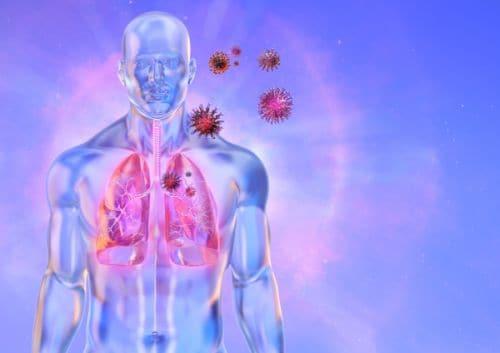 Postmortem Lung Tissue