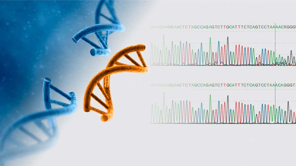 gene editing dna
