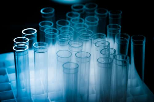 Test tubes on a dark background. Image: Pan Xunbin/Shutterstock.com