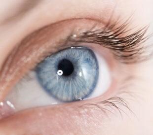 Close-up shot of eye. Image: Alexey Boldin/Shutterstock.com