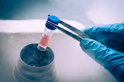 Crypreserved test tube in liquid nitrogen. Image: Elena Pavlovich/Shutterstock.com