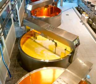 The inside of a modern cheese factory