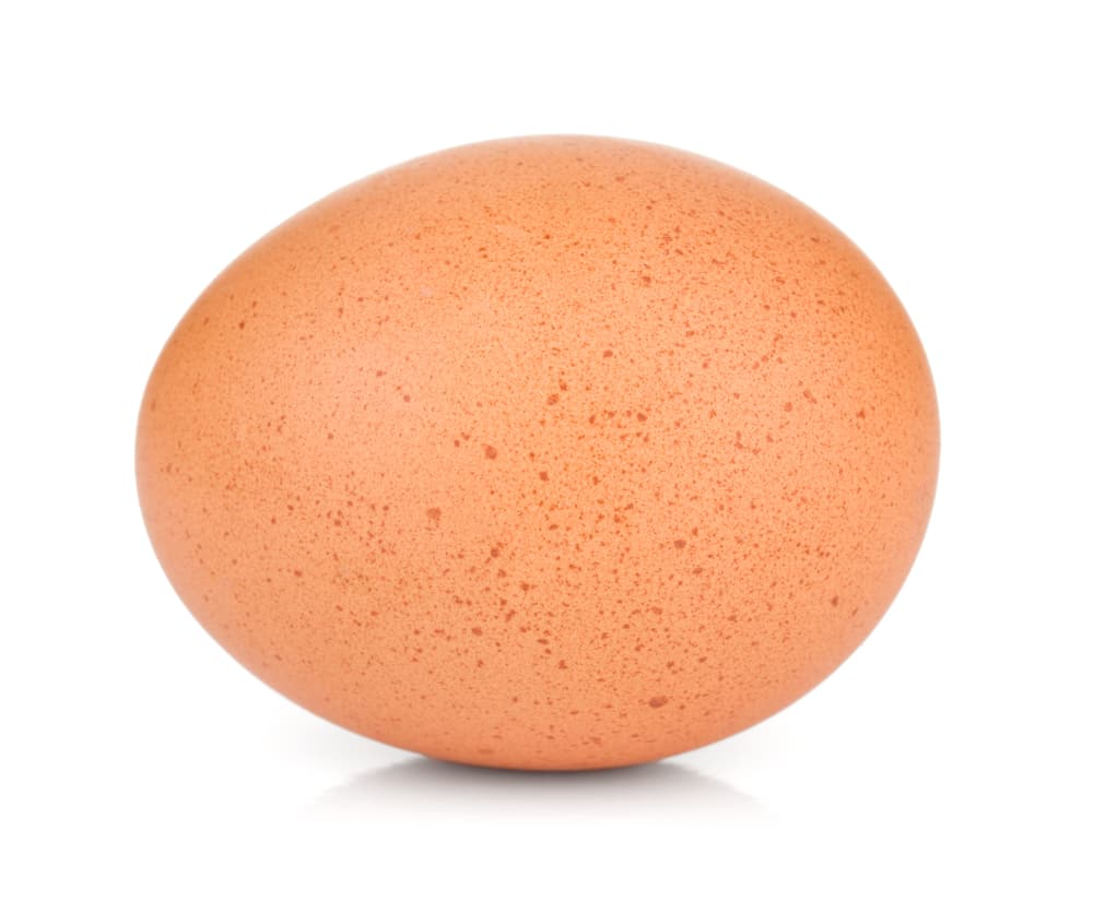 Single chicken egg, isolated on a white background