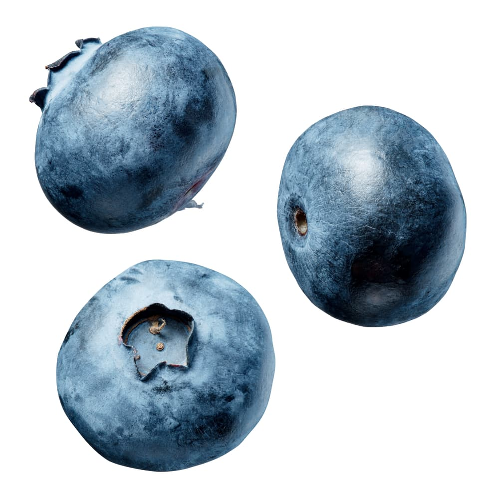 Blueberries, isolated on a white background