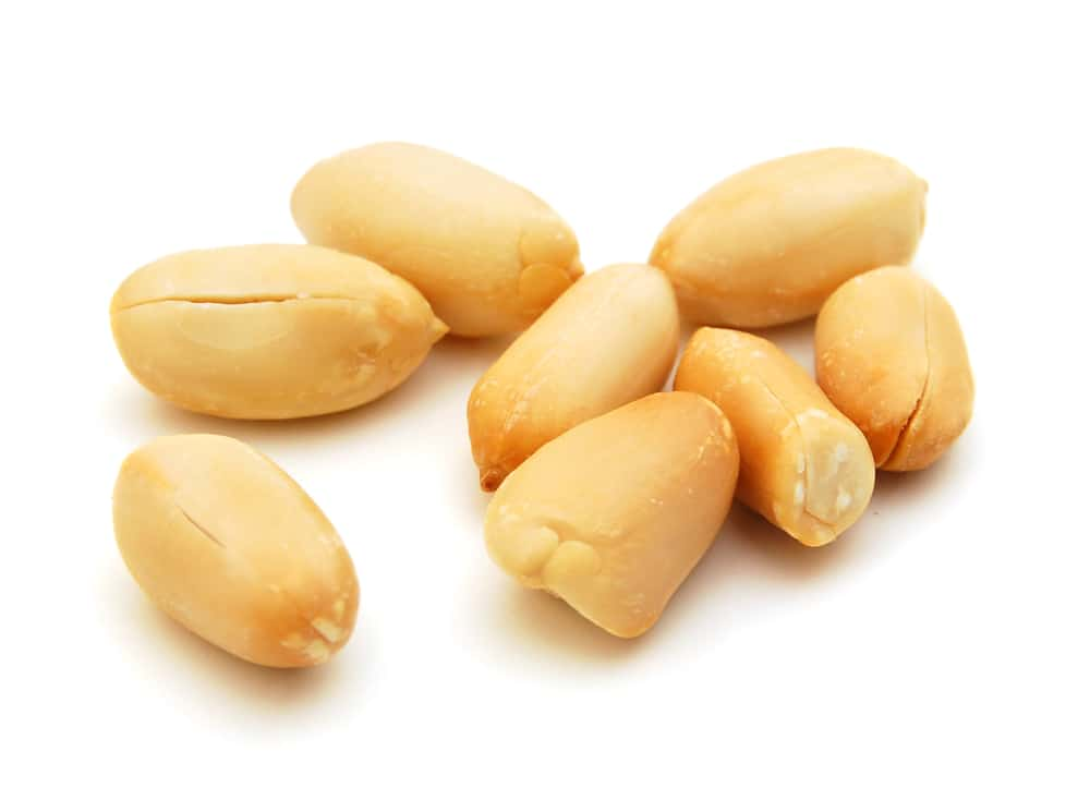Processed peanuts, isolated on a white background
