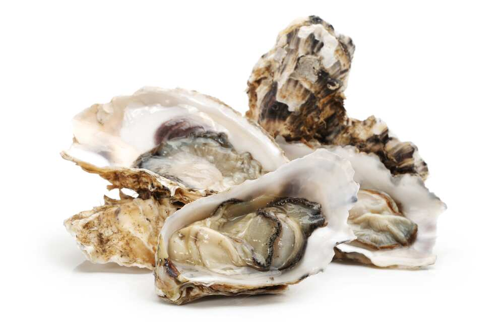 Fresh opened oysters, isolated on a white background