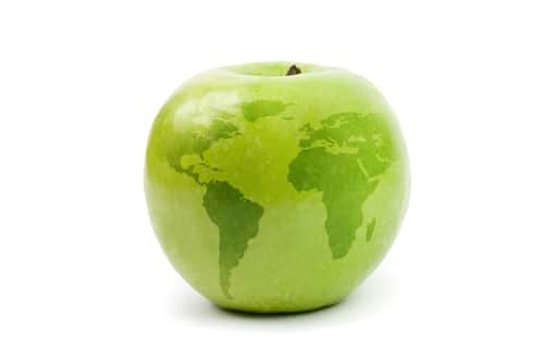 Apple with global map