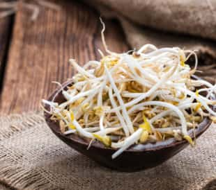 Bowl of Mung bean sprouts