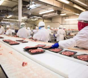 Workers pack meat at a plant. Image: El Nariz/Shutterstock.com