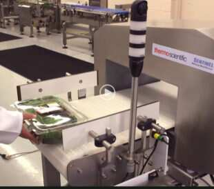 Testing spinach in food metal detector.