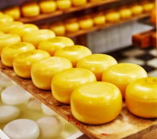 Inspect cheese with metal detectors and x-ray inspection systems