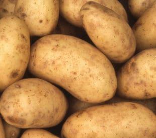 One Potato, Two Potato, Three Potato, Shard!