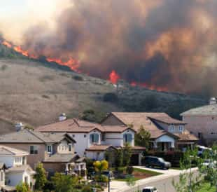 Are the Wildfires Causing Harmful Air Quality Issues?
