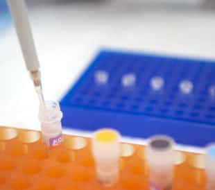 Checking-Your-T4-DNA-Ligase-Activity-title