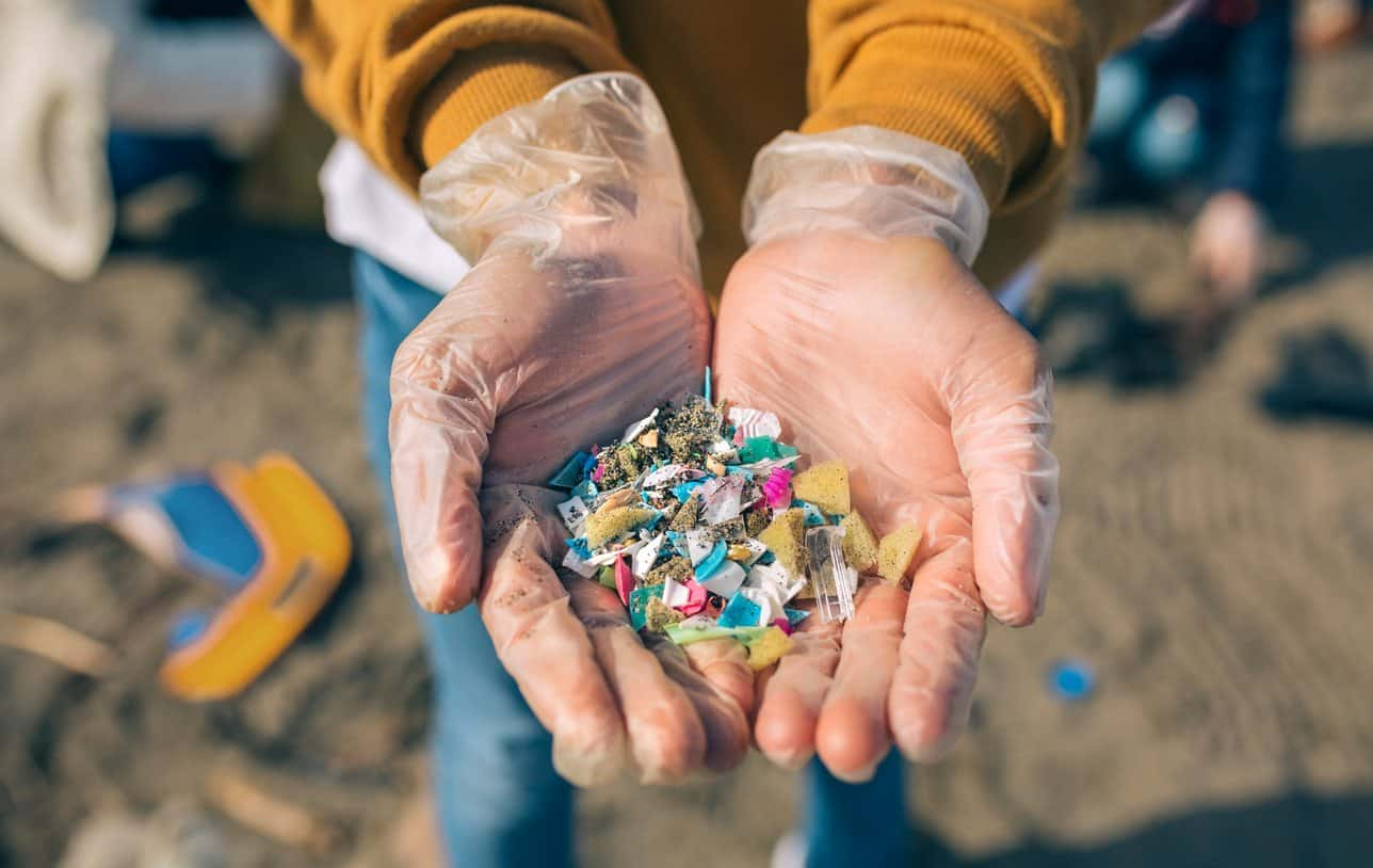 Plastic Particles Found on Beach