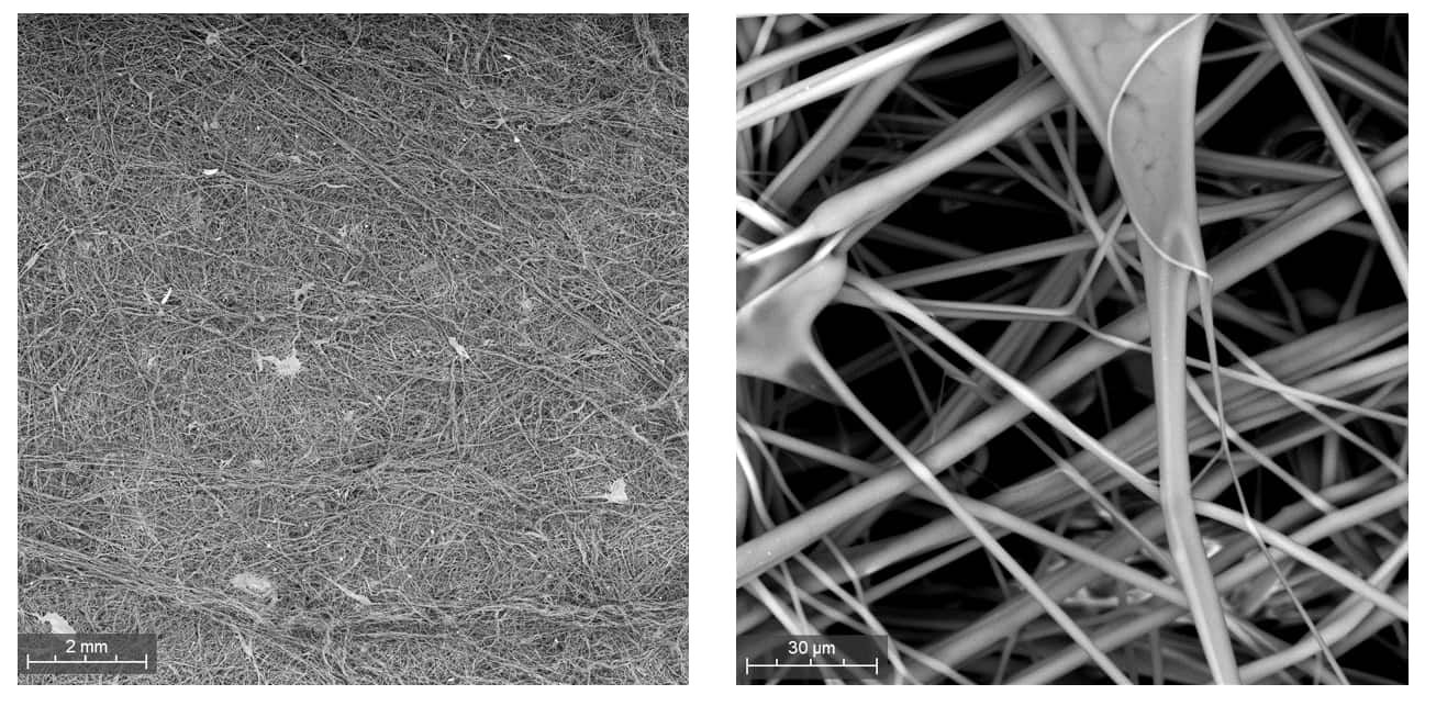 Nonwoven fabric imaged with SEM