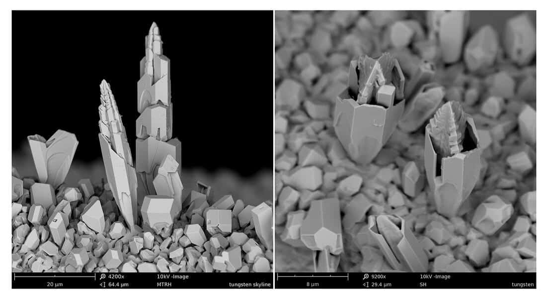 Backscattered electron image of Tungsten particles