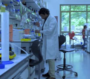 Dr. Vinothkumar working in his lab.