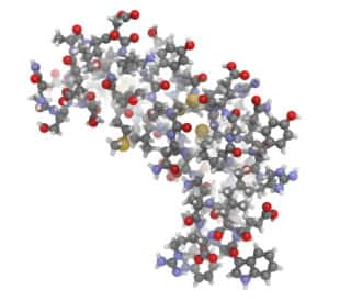 Molecular Structure - Epidermal Growth Factor
