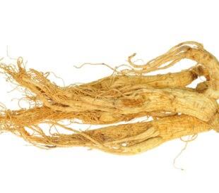Dried ginseng. Image: sunsetman/Shutterstock.com