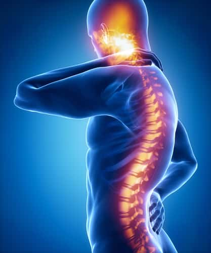 Artist illustration of spinal cord. Image: CLIPAREA l Custom media/Shutterstock.com