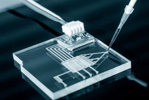 A lab on chip is device integrates several laboratory processes in one device, mostly LOC based on glass plate. Image: science photo/Shutterstock.com.