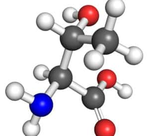 Threonine (amino acid) molecule, ball and stick model. Atoms colored according to convention. Image: petarg/Shutterstock.com.