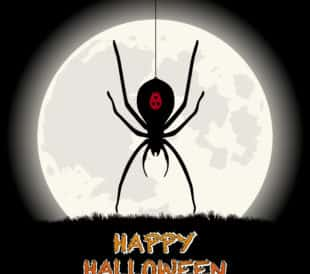 Spider Happy Halloween