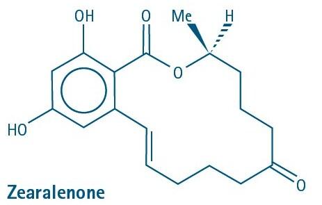 Mycotoxin Zearalanone
