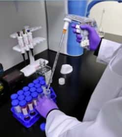 pipette in sample tubes