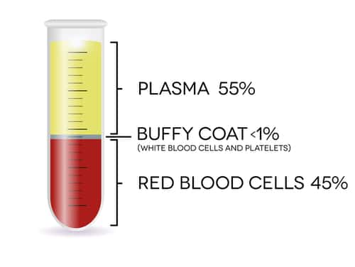 Test tube showing percentage of plasma, red blood cells, and buffy coat in a blood sample.