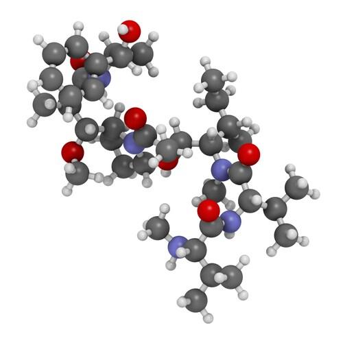 Image: molekuul.be/Shutterstock.com