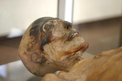 Skeleton mummy. Image: Giancarlo Liguori/Shutterstock.com