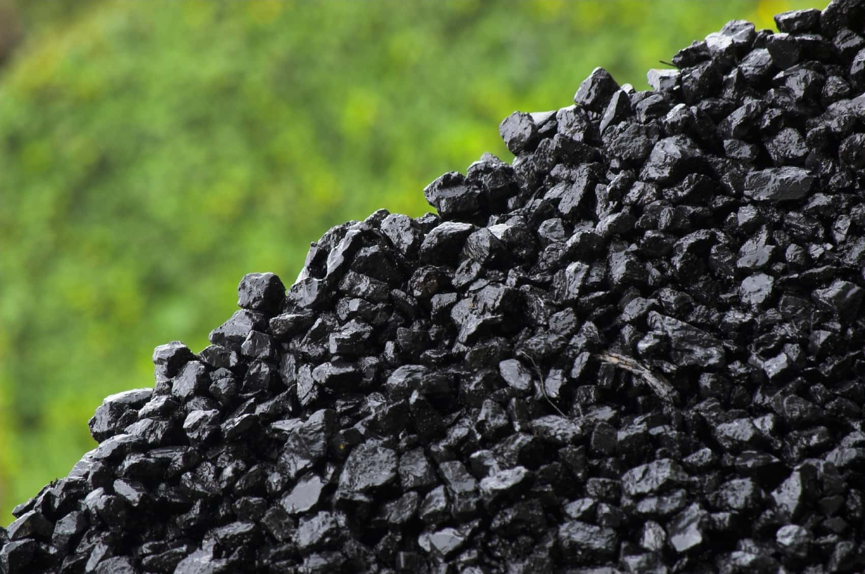 Coal exports from Australia's Port Kembla terminal fall to 386,280 mt in July