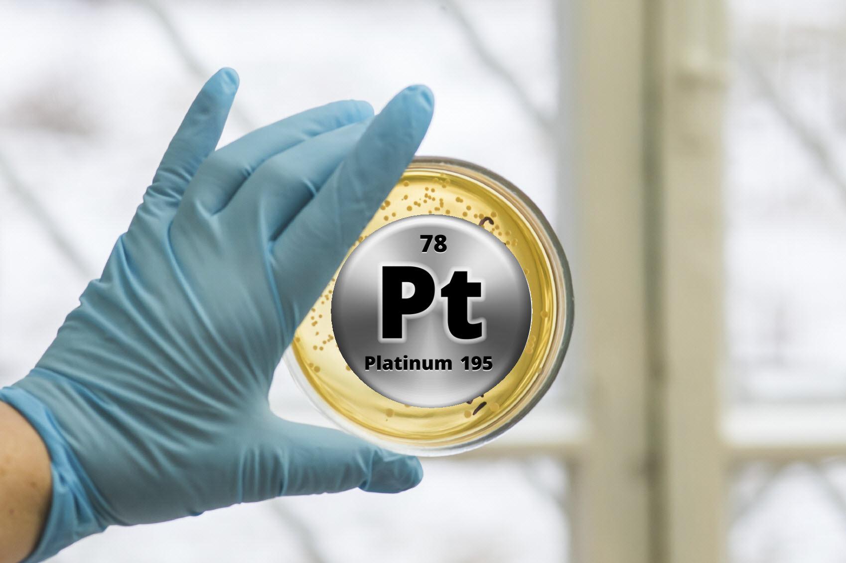 platinum bacteria