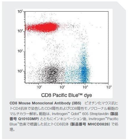 CD8 Mouse Monoclonal Antibody (3B5)