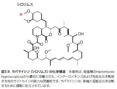 ラパマイシン(シロリムス)の化学構造