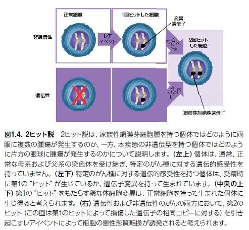 重複 遺伝 癌 性