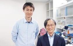 崔 広為 氏 (京都大学ウイルス・再生医科学研究所 免疫制御分野 助教)