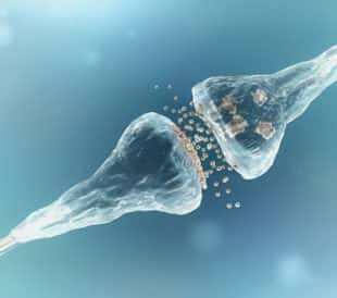 Synapse and neuron cells sending electrical chemical signals. Image: adike/Shutterstock.com.