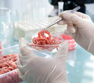 Ground beef inspection in a lab