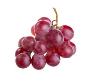 Purple table grapes, isolated on a white background