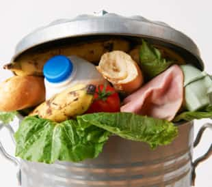 Fresh food in a garbage can. Image: SpeedKingz/Shutterstock.com