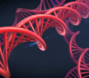 Abstract DNA. Image: elsar/Shutterstock.com