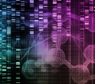 Medical data sharing. Image: kentoh/Shutterstock.com