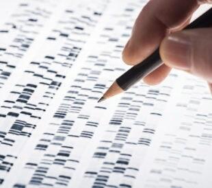 DNA sequencing. Image: gopixa/Shutterstock.com