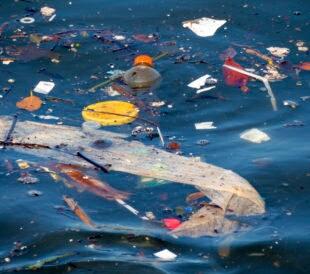 ocean plastic pollution